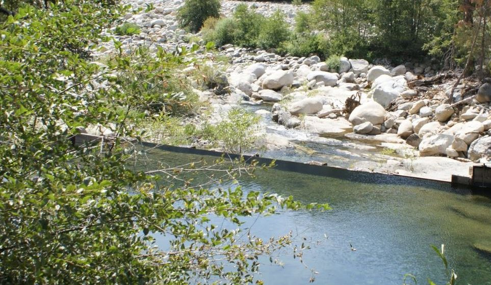 Life is perfect on the South Yuba River. Unless you're 15 year old teenage boy with no mobile service.
