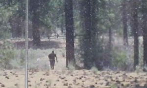 Grainy Photo taken by Keith Bradenshauer of Alta Sierra