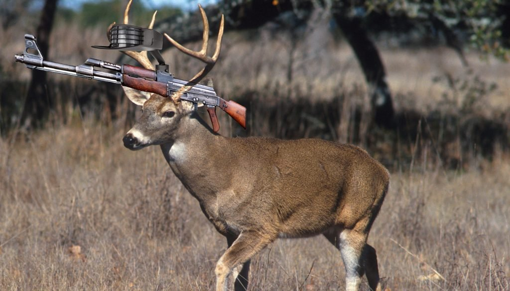 Local Activists Propose Arming Deer Populations