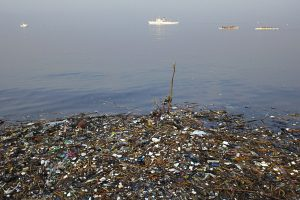 Pacific trash vortex deserves protecting, say Angela Hansen.