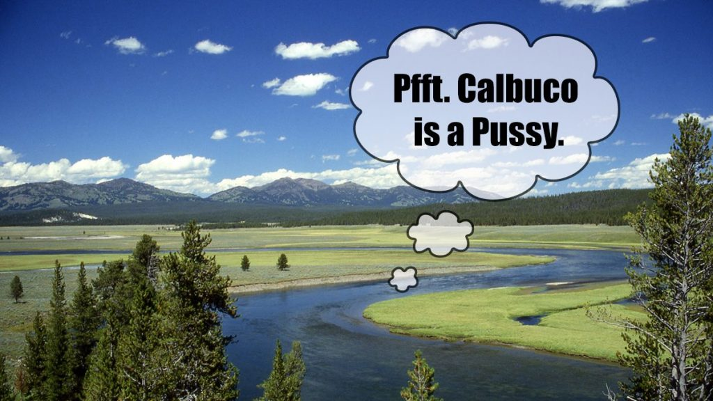 The Yellowstone Caldera seen here openly mocking Chile's Calbuco volcano.