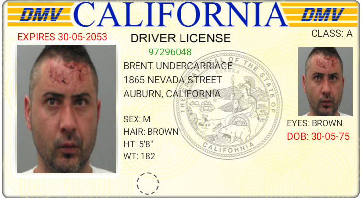 You're guaranteed to look like a felon using the new DMV photo ID system.
