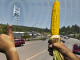 Anti-GMO Movement Responsible for Poor Brunswick Cell Phone Service
