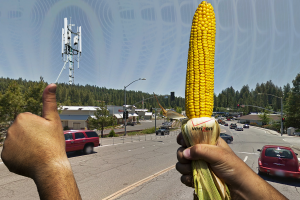 Come to find out your anti-GMO protests have impacted cell phone coverage.