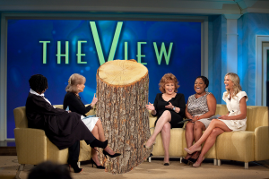 """Area Stumps and local Attorney Michael Nudelman will be appearing on """"The View."""""""