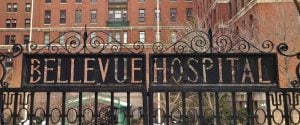 Delaney Faris is currently being held in the notorious psych ward of Bellevue Hospital in New York City.