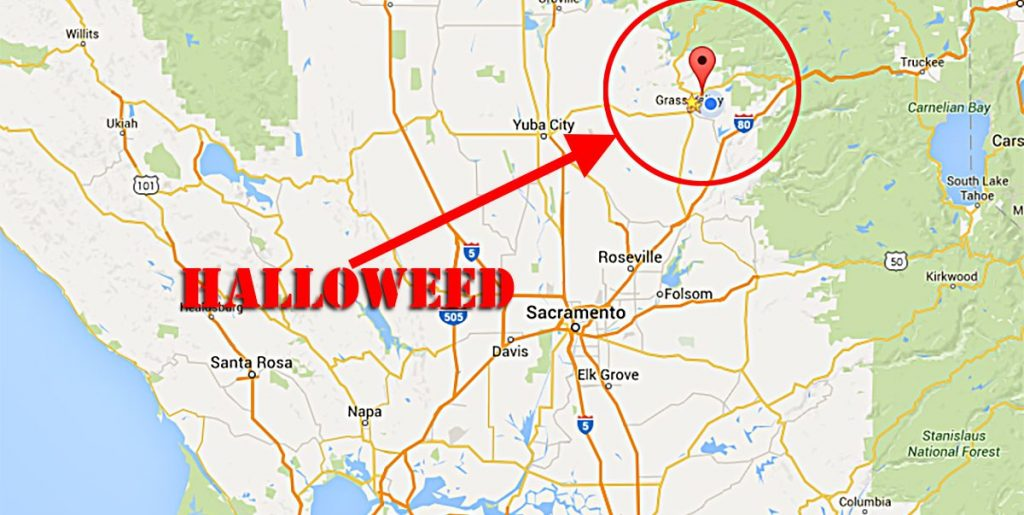 Here's how to find the Halloweed Parade on Saturday, October 31st in Nevada City,CA.
