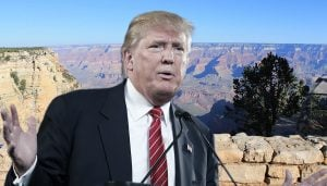 Donald Trump made his surprise announcement at the Grand Canyon.