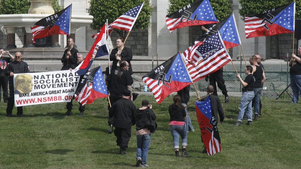 The American Nazi Party of Illinois