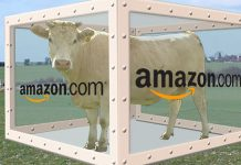 "Artist's rendition of Amazon's ""Cow in a Box"" Prime Pantry offering"