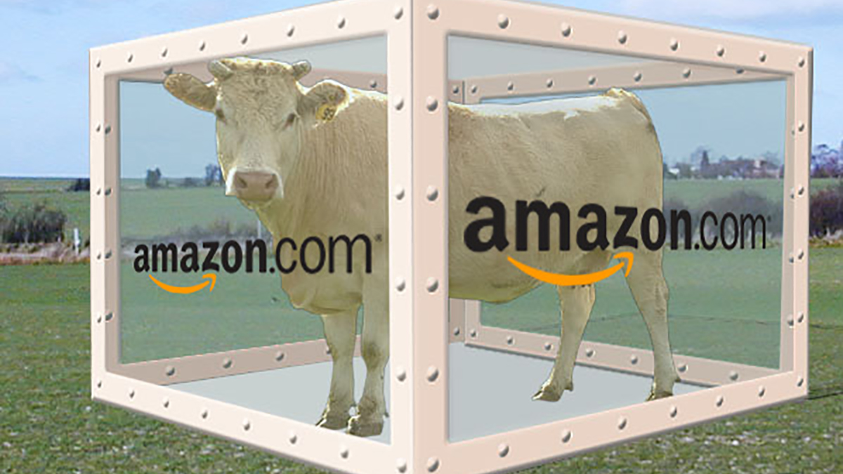 """Artist's rendition of Amazon's """"Cow in a Box"""" Prime Pantry offering"""