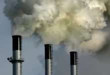 California announced that it plans on building as many as 8 coal-fired power plants in the next few years.
