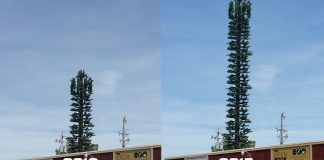 A 20016/2017 comparison of the remarkable growth the Grass Valley cell phone tower has experienced following this past year's record rainfall.