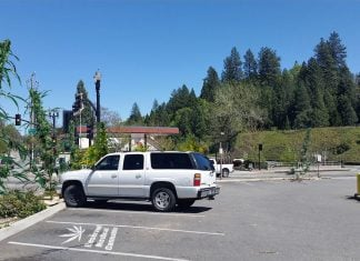 The Grass Valley Post office has replaced downed trees with the County's #1 cash crop.