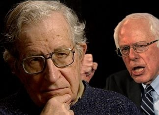 Senator Bernie Sanders will portray MIT Professor Noam Chomsky in an upcoming biopic.