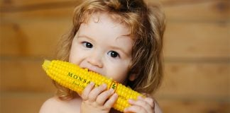"Monsanto's Vacci-cornâ""¢ will combine the GMO goodness of corn, with the life-saving flu vaccine."