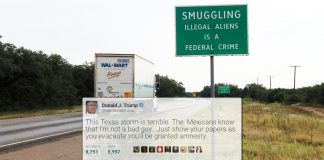 President Trump in an early morning tweet promised amnesty for all illegal immigrants escaping the fury of Hurricans Harvey.