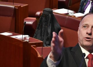 Representative Steve Kinf (R-IA) donned a conservative Islamic woman's burqa into Congress late this week.