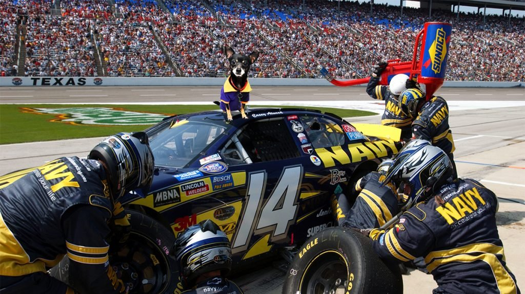 NASCAR announced that it will allow drivers to use service animals during races.