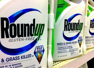 The makers of the world's most popular herbicide have announced a gluten-free version of RoundUp.